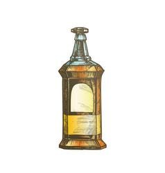 color rectangular vintage whisky booze bottle vector image