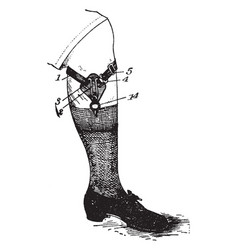 Costume garter vintage engraving vector