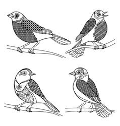 hand drawn entangle birds vector image