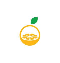 orange fruit logo design vector image