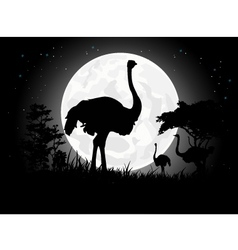 Ostrich silhouettes with giant moon background vector image