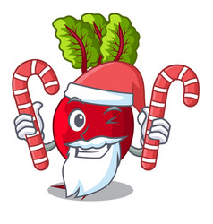 Santa with candy whole beetroots with green leaves vector