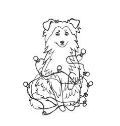 sheltie shetland sheepdog dog or collie in a new vector image