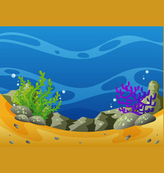 underwater scene with coral reef vector image