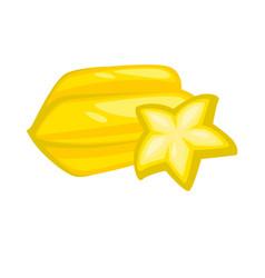 yellow sweet juicy carambole isolated on white vector image vector image