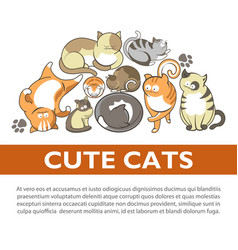 cartoon cute cats and kittens pet playing vector image