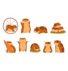 cute cartoon hamster characters set funny animal vector image