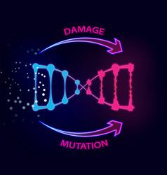 External factors that cause dna damage vector