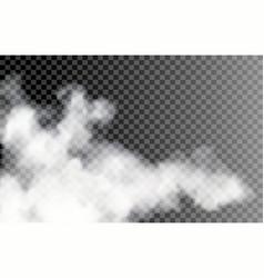 fog on transparent background vector image