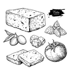 Greek feta cheese block slice drawing vector
