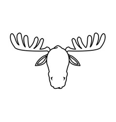 moose antler animal natural wildlife image vector image