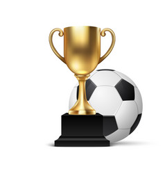 realistic 3d blank golden champion cup icon vector image