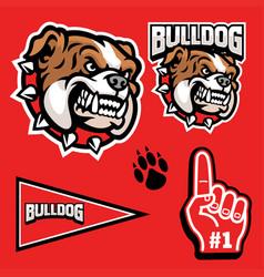 Set sporty angry bulldog mascot head vector