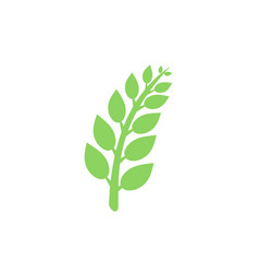 tree branches with leaves icon plant vector image