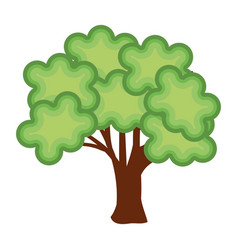 Tree plant nature isolated icon vector