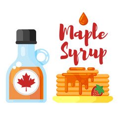 flat style of pancakes with maple syrup vector image