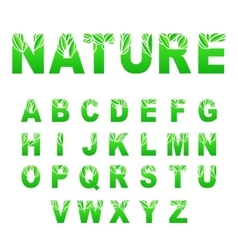 Green Leaves Font vector image