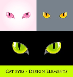 Cat eyes vector image vector image
