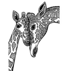 Graphic with two giraffes in love vector