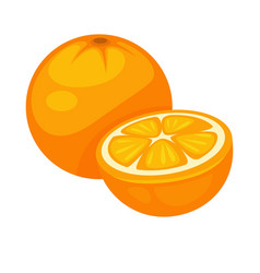 orange tropical fruit whole and half isolated on vector image