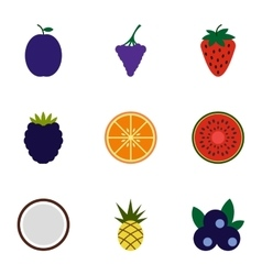 Orchard fruits icons set flat style vector image