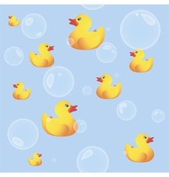 Rubber Ducks vector image