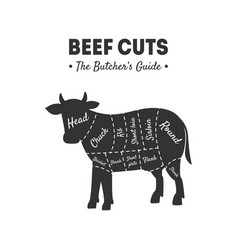 beef cuts butchers guide meat shop label farm vector image