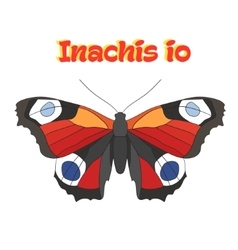 Butterfly inachis io vector