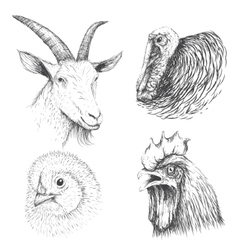 Collection of farm animals face vector image