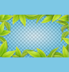 green leaves frame on transparent background vector image