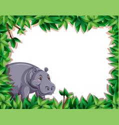 Hippo in nature border vector