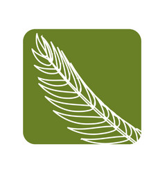Label tropical branch leaves plant vector