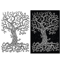 old tree without leaves on white and black backgro vector image