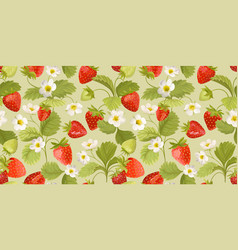 strawberry pattern with flowers wild berries vector image