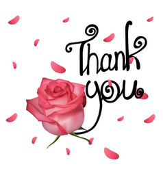 thank you with rose vector image