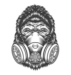 Vintage monochrome gorilla head vector