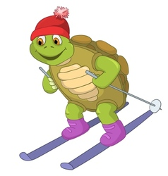 Funny Turtle Skiing vector image