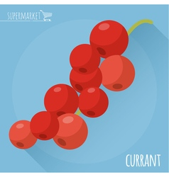 Red currant icon vector image