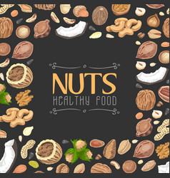 background with colored nuts and seeds vector image