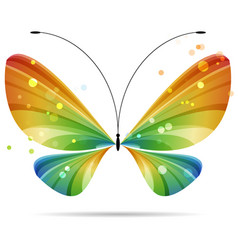 colorful multicolor striped bright butterfly vector image