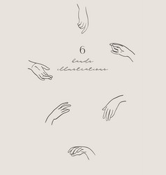 line drawing hands palms wrists vector image