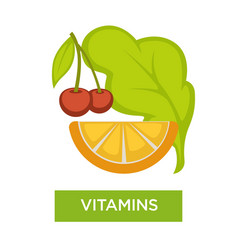 vitamins from food with slice lemon or orange vector image