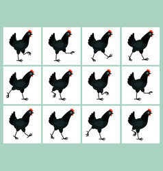 walking black hen animation sprite sheet isolated vector image