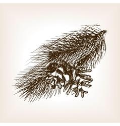 Pine branch sketch style vector