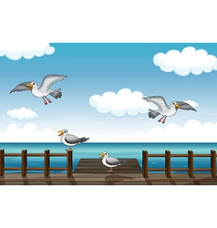 A flock of birds looking for foods vector