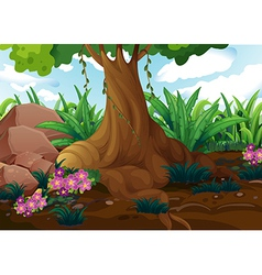 An old tree at the jungle vector image