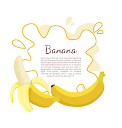 banana exotic juicy ripe yellow fruit berry icon vector image