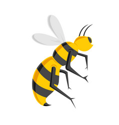 bee cartoon icon vector image
