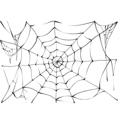 Black spider web on white background vector