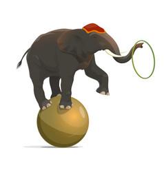 Circus elephant balancing on ball juggling hoop vector